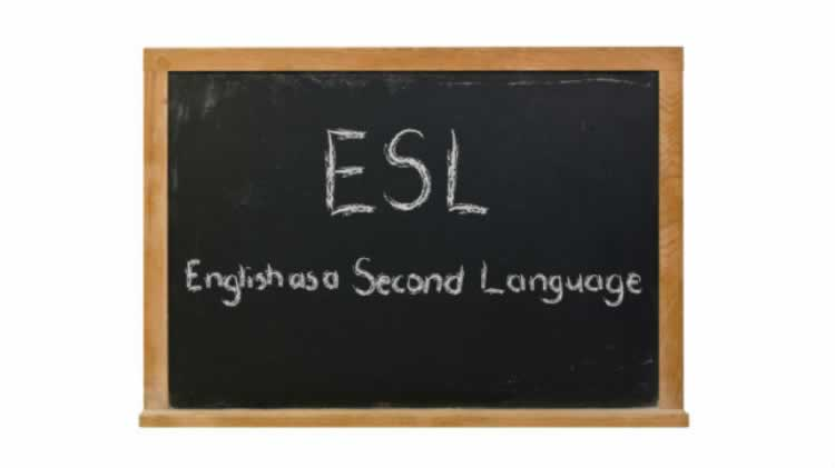 Beginners English as a Second Language (ESL)