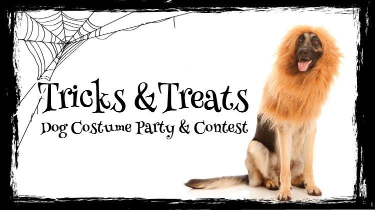 Tricks & Treats: Dog Costume Party & Contest